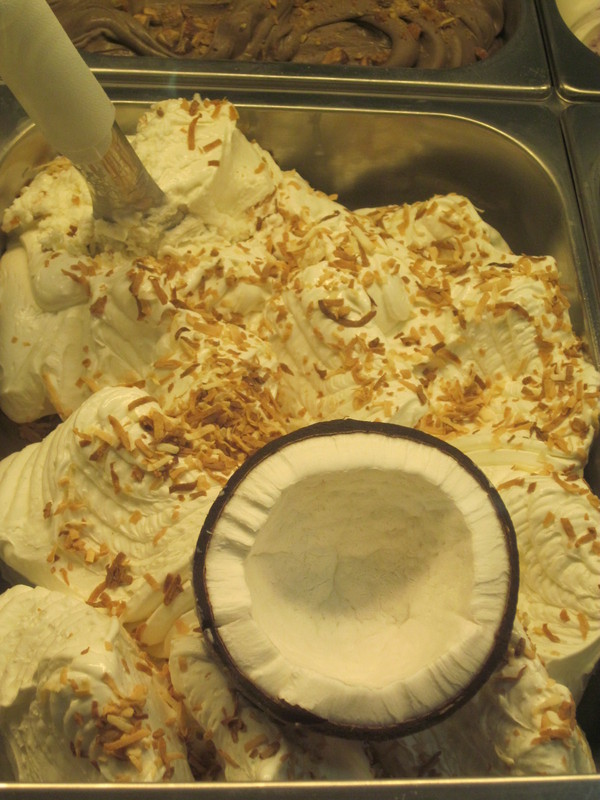Coconut gelato sprinkled with toasted coconut