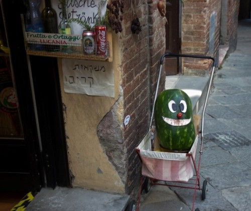florence amusing watermelon